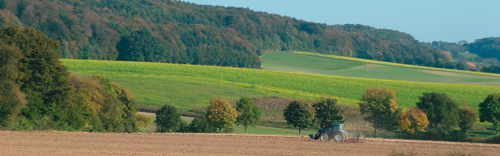Gartenbau Coesfeld naturschutzzentrum coesfeld